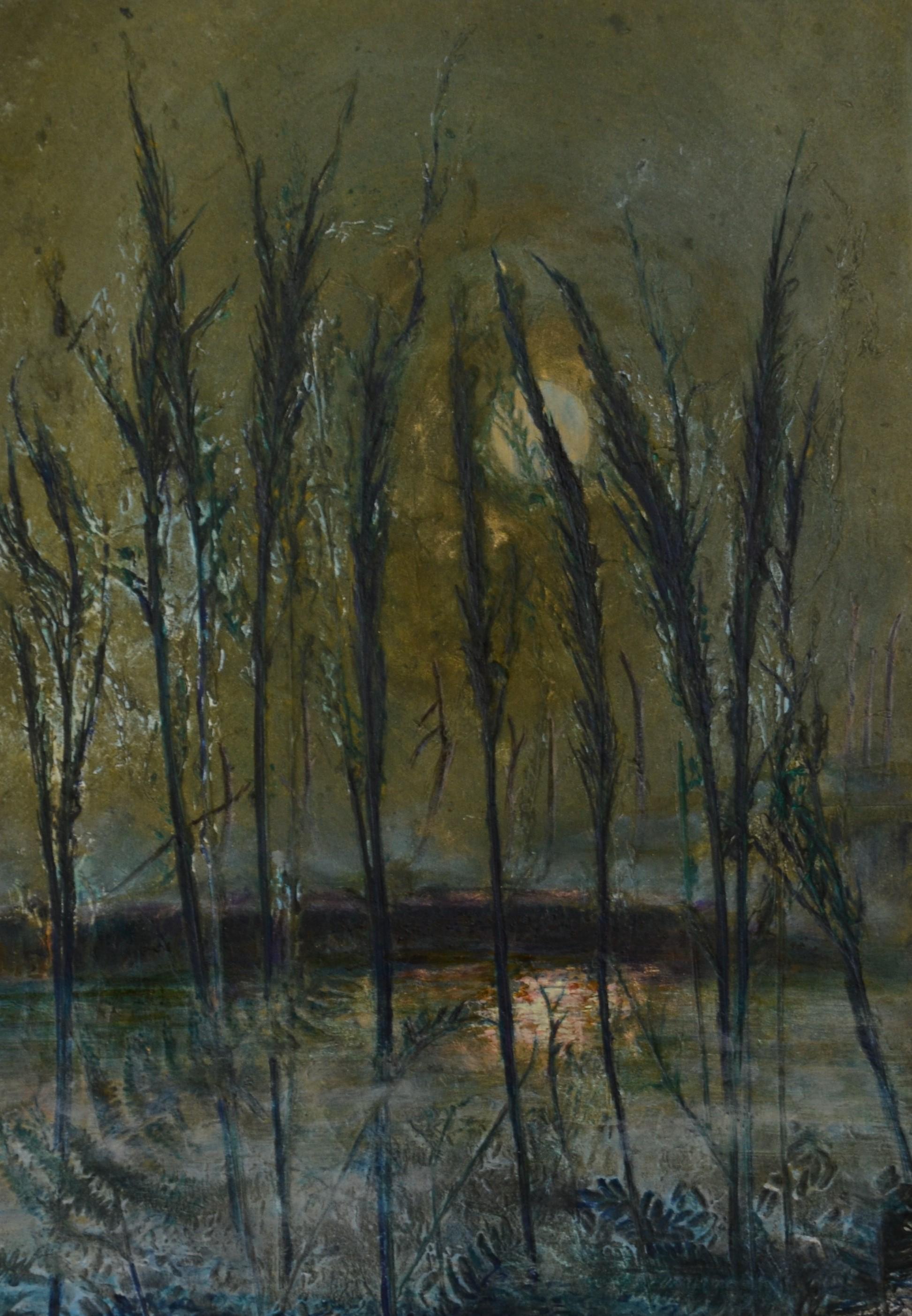 moonlit-november-1
